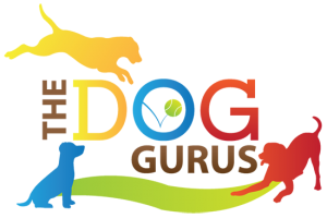 The Dog Gurus Logo