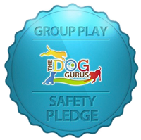 The Dog Gurus Safety Pledge Logo