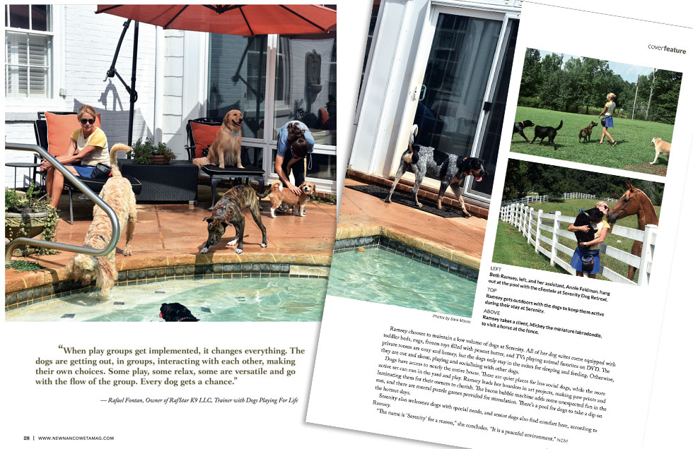 Newnan Coweta Magazine article spotlighting Serenity Dog Retreat with photos of our pool and property.