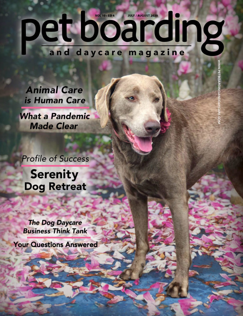Pet Boarding and Daycare Magazine Cover July August Chocolate Lab under pink magnolia tree
